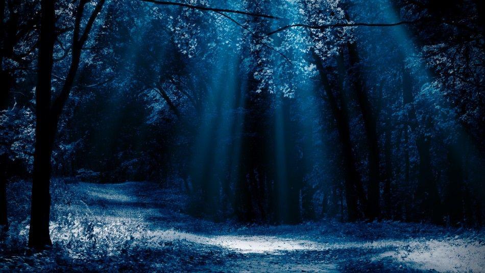 Dark Room retreat: wat vindt de psycholoog?
