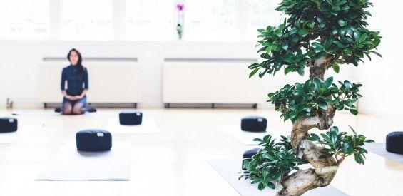 Marieke van Meijeren opent De Bewustzijn School