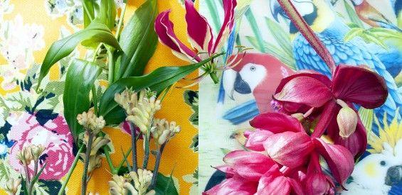 Woontrend: tropische kamerplanten