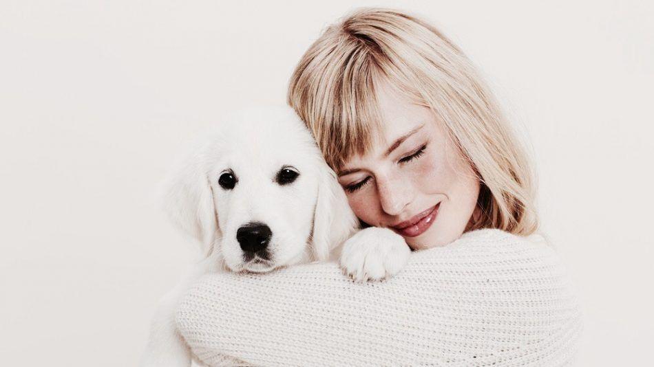 huisdieren gezond