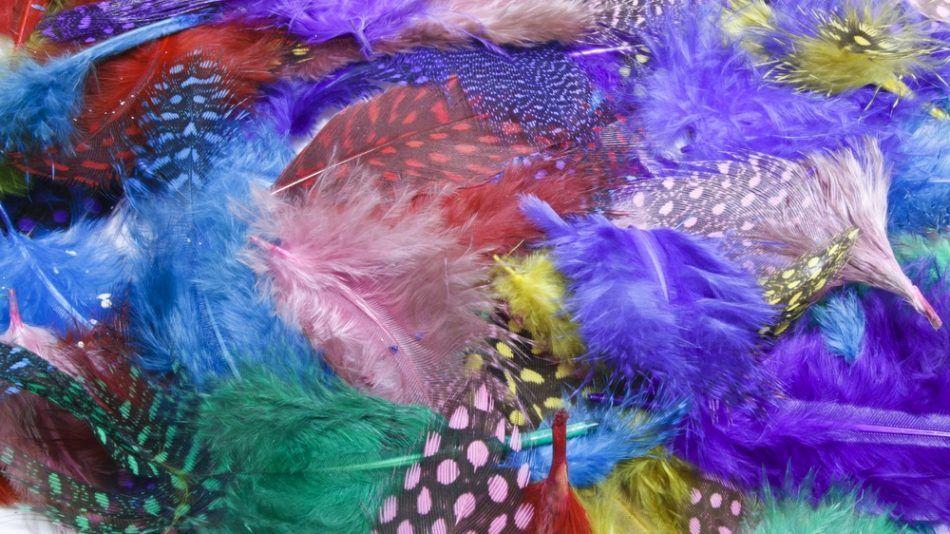 Feng shui en de kleuren in je huis holistik for Feng shui kleuren