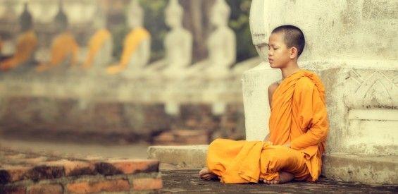 vipassana, Dennis Roelofsen, 10 jaar wijzer in 10 dagen