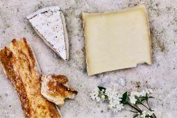 wat moeten we nou met kaas
