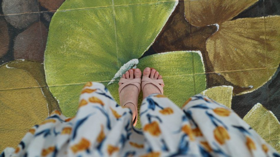 Kracht Planten Huis : Feng shui de kracht van kleur in je huis én kleding holistik