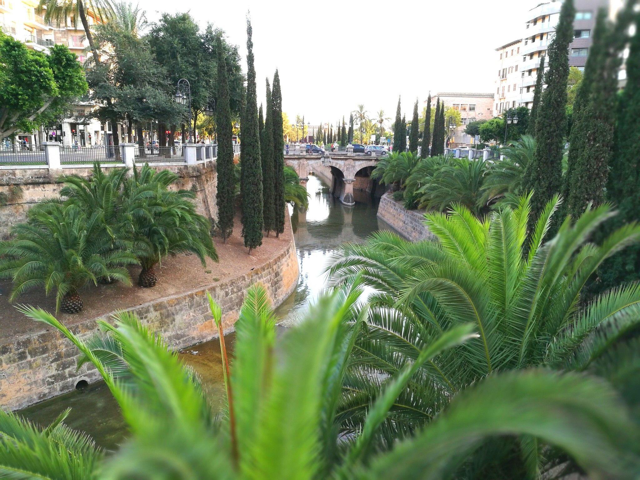 Mallorca, Palma, hotspots