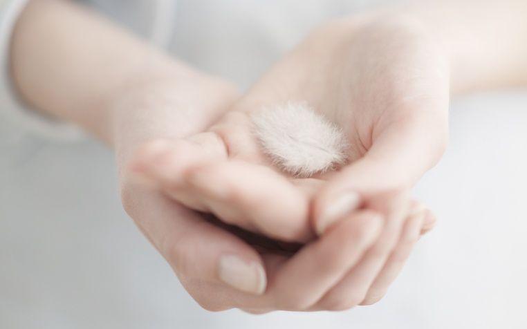 healen handen
