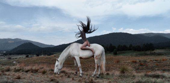 Dit is waarom jouw nieuwe levenscoach een paard zou moeten zijn…