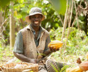 cacaoboer ivoorkust