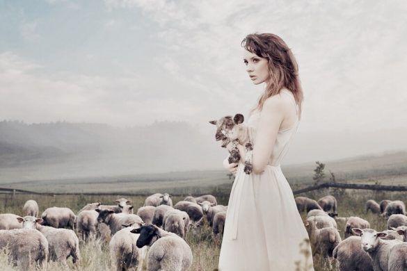 armed angels, wool organic