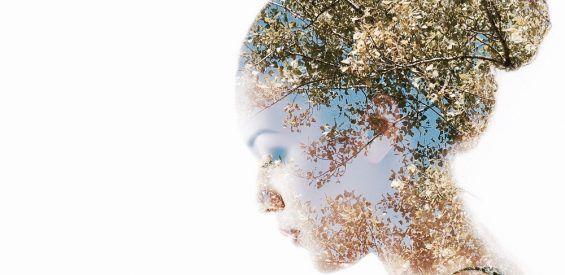 Groot Amerikaans onderzoek wijst uit: wie stress omarmt leeft langer