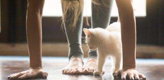 Je woonkamer omtoveren tot yogaschool? Met deze 5 tips gaat het lukken