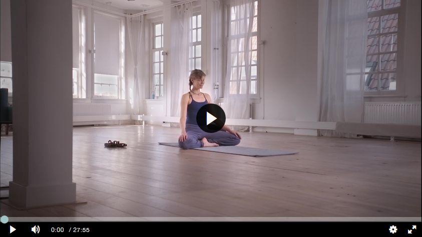 the house of yoga, samenwerking tory