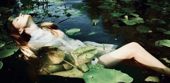 Boerhaavia: dit Ayurvedische verjongingskruid rekent af met afvalstoffen in je lijf