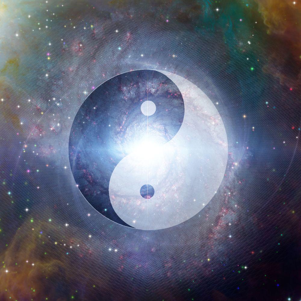 yin yang organen