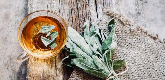 salie thee gezond