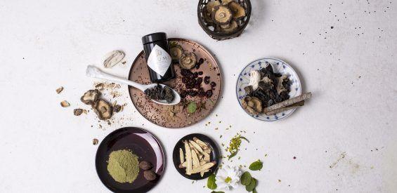 YLUMI: holistische supplementen met kruiden uit de Ayurveda en Traditionele Chinese geneeskunde