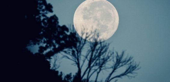 Déze groene steen is jouw beste vriend bij de eerste volle maan van de lente