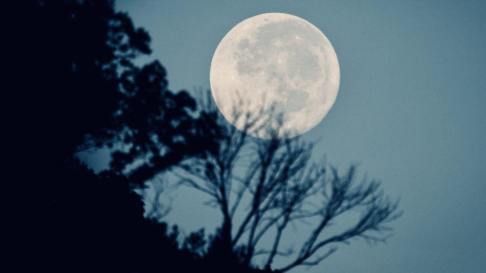 volle maan lente