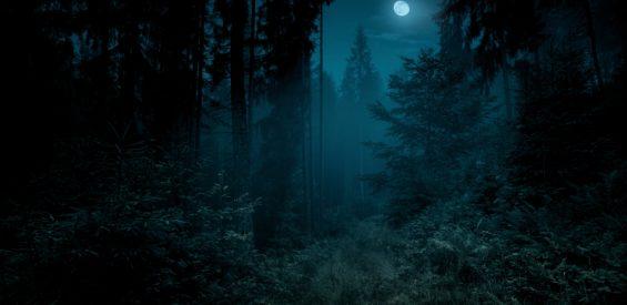 Volg het ritme van de maan en kom dichter bij je vrouwelijke natuur