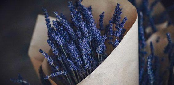 Lavendel & citroengras: heilzaam voor je huid, kalmerend voor je geest