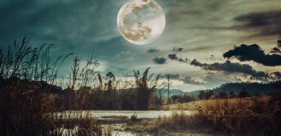 Volle maan in Ram: dit is wat de Jachtmaan jou wil vertellen