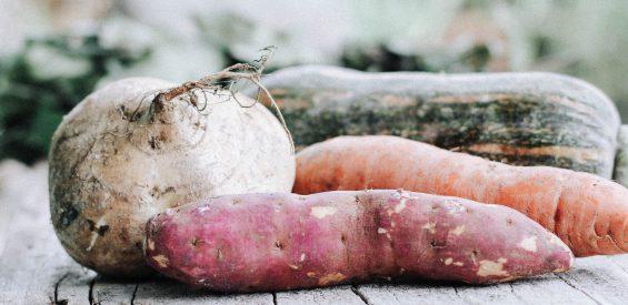 Orthomoleculair therapeut: deze voeding houdt je warm, gezond én vrolijk nu de winter nadert