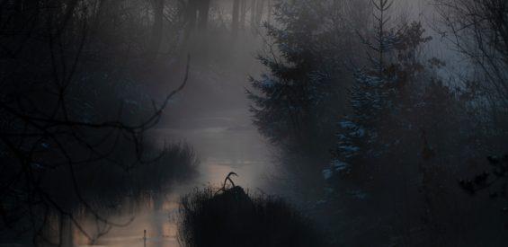 12 Heilige Nachten: zo open je tussen Kerst en Driekoningen je spirituele poort