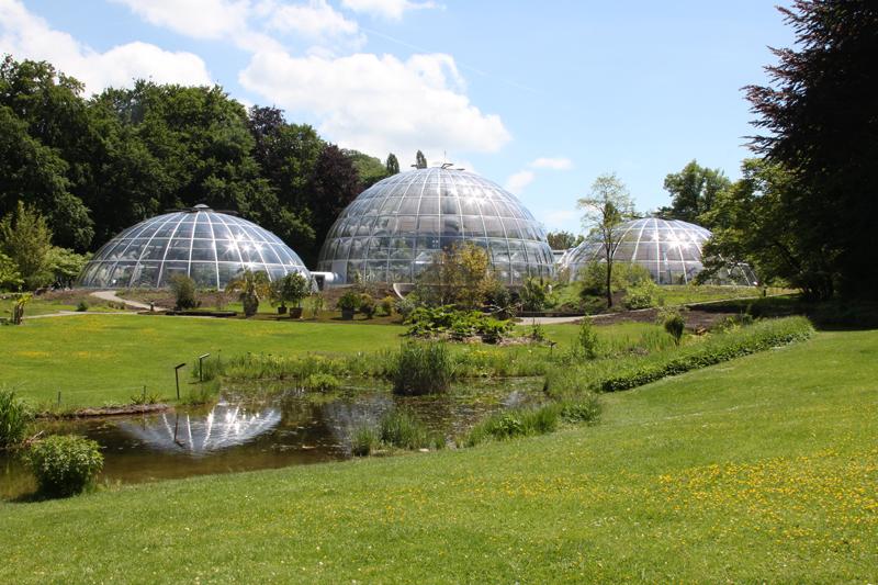 botanische tuin zurich