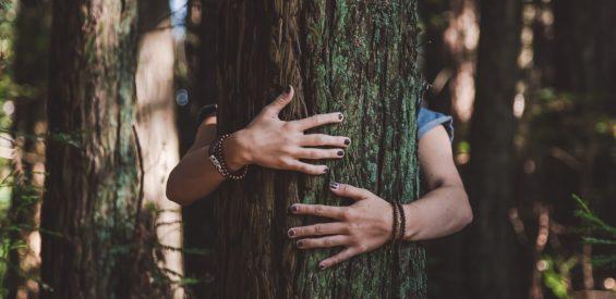Knuffelen als primaire levensbehoefte: waarom we aanraking nu zo ontzettend missen