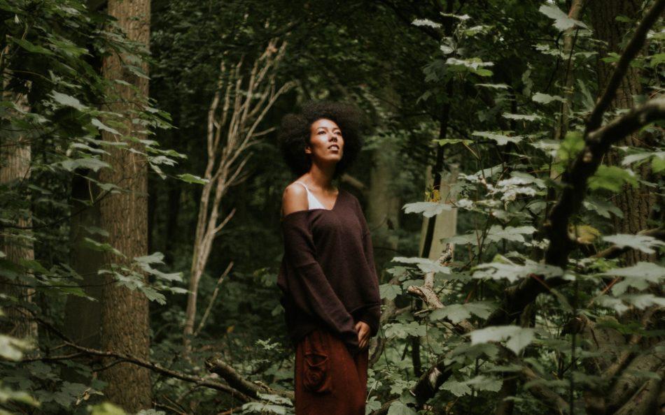 Medicijnwandeling: verdwaal 1 dag in de natuur en kom thuis in jezelf