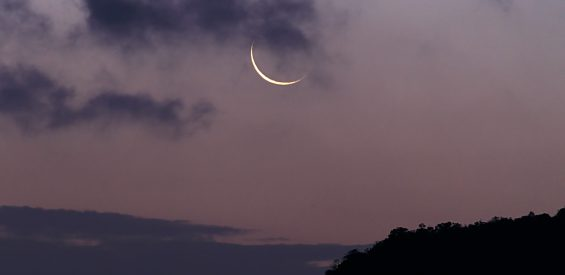 nieuwe maan stier