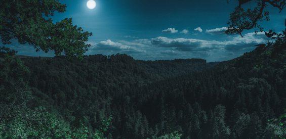 Soul Retrieval meditatie: zo breng je met Volle Maan jouw afgesplitste kindsdeel thuis