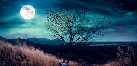 Zo haal je het meeste uit de ambitieuze Volle Maan in Steenbok: 3 selfcaretips