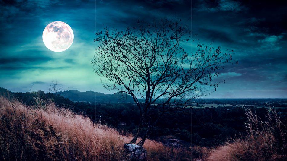 volle maan steenbok