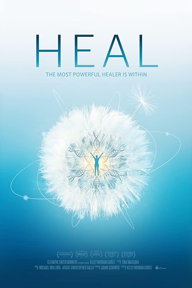 heal conscious netflix