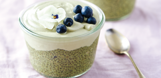 recept zen chiapudding