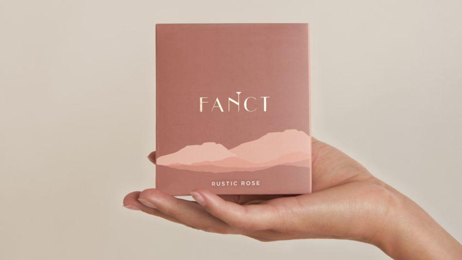 fanct v-steam