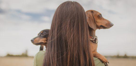 Epigenetisch psycholoog: déze 5 waardevolle levenslessen kunnen mensen leren van dieren