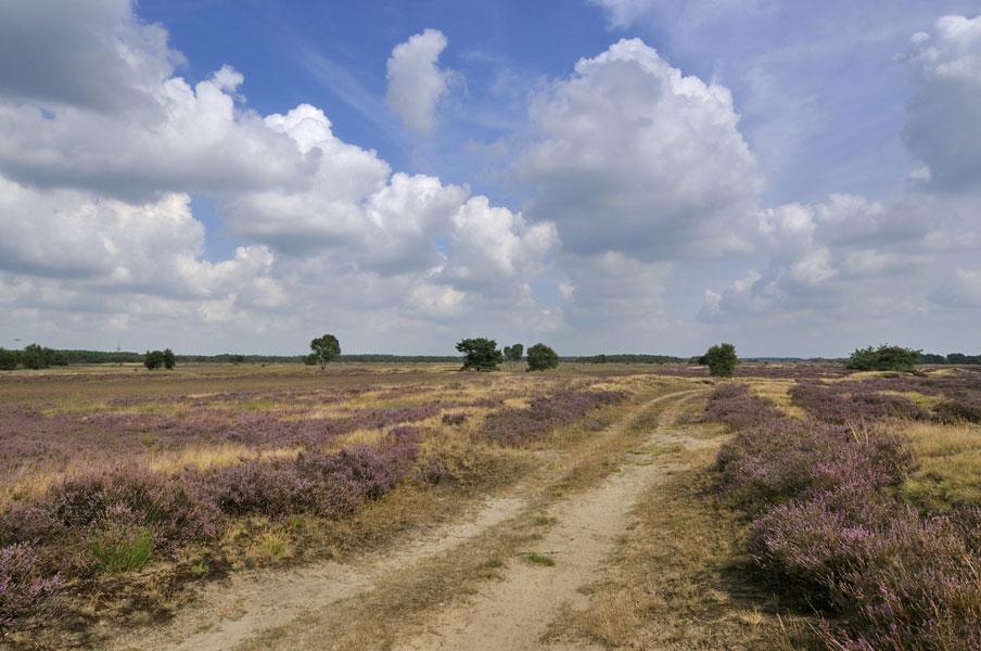 stilste plekken nederland